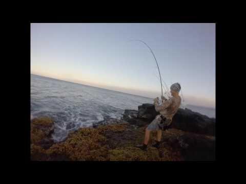 Ulua Fishing 2017