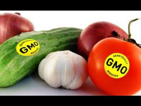 The GMO Labeling Debate