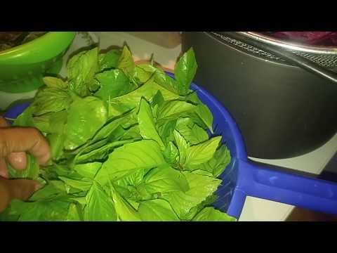 Harvest Haul: Week #3  Mix Organic Green Salad