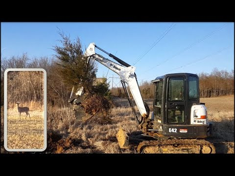 Saving Trees! Daily Farm VLOG, Transplanting Trees, Excavator & Wildlife 01-26-18