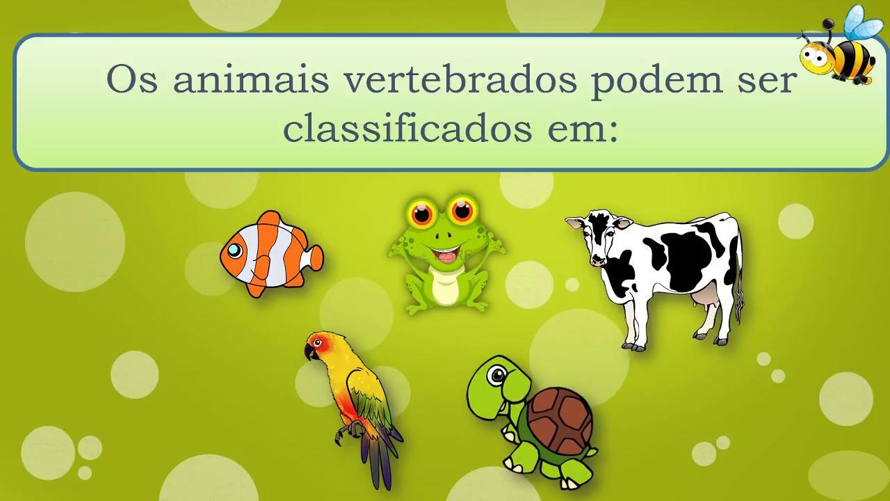 Animais Vertebrados E Invertebrados Youtube
