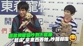 蕭敬騰被貓吵到不能睡 起床「拿東西丟牠」吵醒報復XD