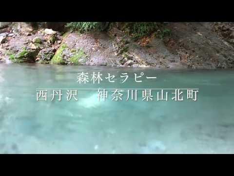 August 24th 2019 川泳ぎ