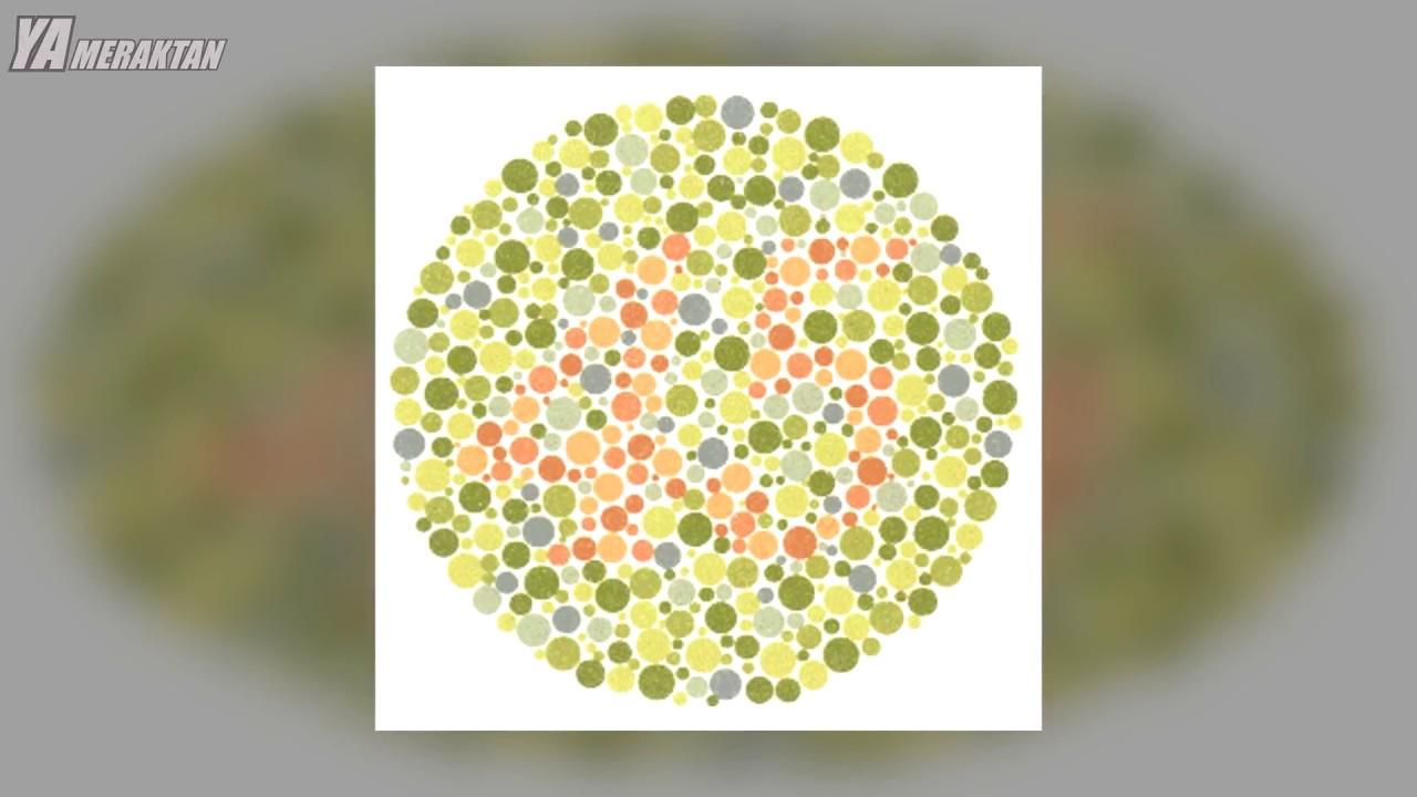 Renk Körü Insanların Gözünden Dünya Nasıl Youtube