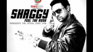 Shaggy- Feel the rush