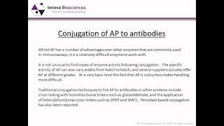 Alkaline Phosphatase Webinar: Applications and Advantages of Alkaline Phosphatase in Immunoassays