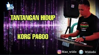 TANTANGAN HIDUP Karaoke cover KORG Pa600
