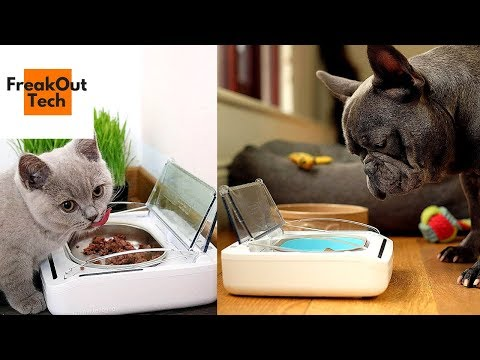 5 Pet Gadgets You Never Knew About