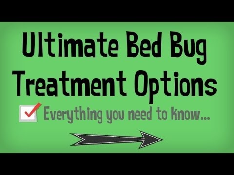 Learn How To Get Rid Of Bed Bugs Fast Natural Treatments For