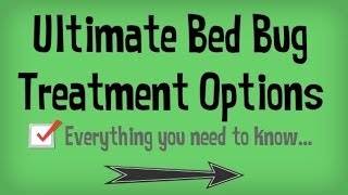 Learn How To Get Rid Of Bed Bugs Fast | Natural Treatments For Getting Rid Of Bed Bugs Yourself