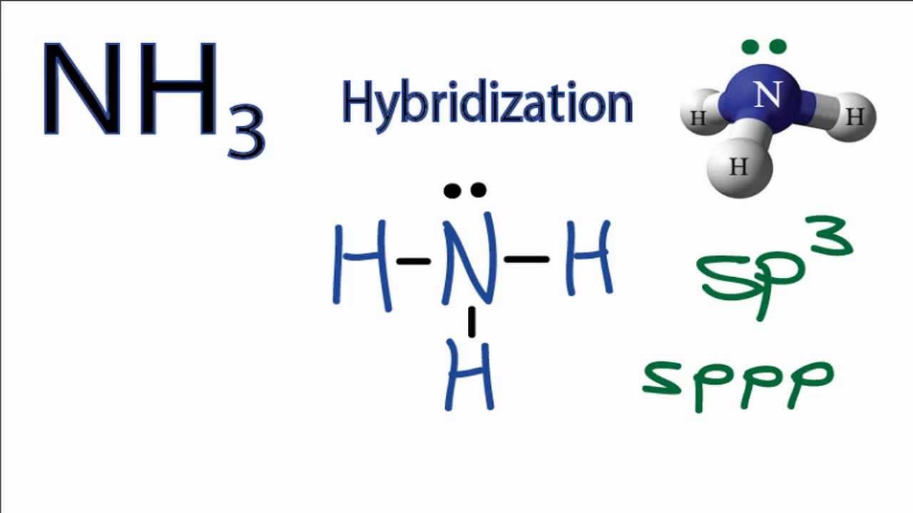 NH3 Hybridization: Hybrid Orbitals for NH3 (ammonia) - YouTube