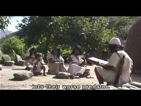 Kogi / Arhuaco The Black Line  Sacred Ceremony