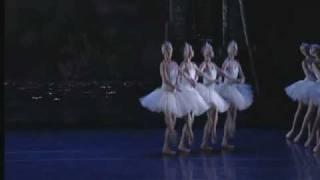 Swan Lake Act II - Cygnets
