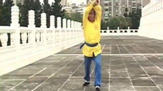 Incredible Mantis (Lan Jie) Kung Fu by top Taiwan master