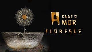 Onde o Amor Floresce [Doc] | 4K - YouTube