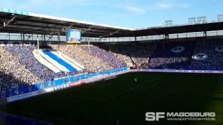 1. FC Magdeburg -  1. FSV Mainz 05 II Geburtstagschoreographie