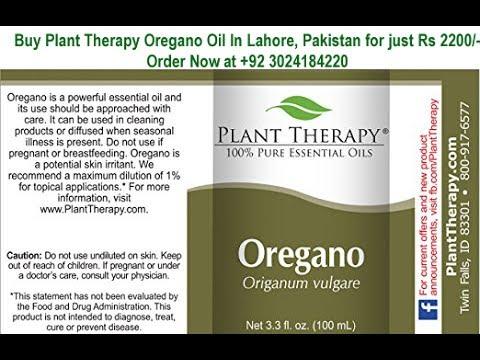 buy wild oregano essential oil 100 pure in lahore pakistan