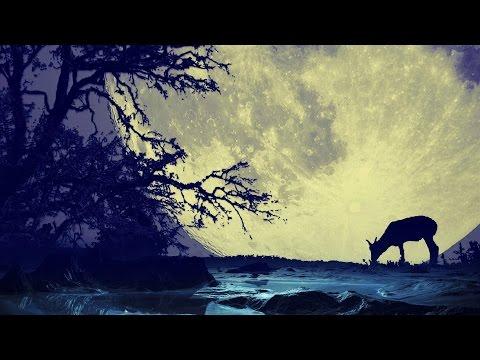 Música para Dormir Profundamente y Relajarse: Piano Música Relajante con Sonidos de la Naturaleza