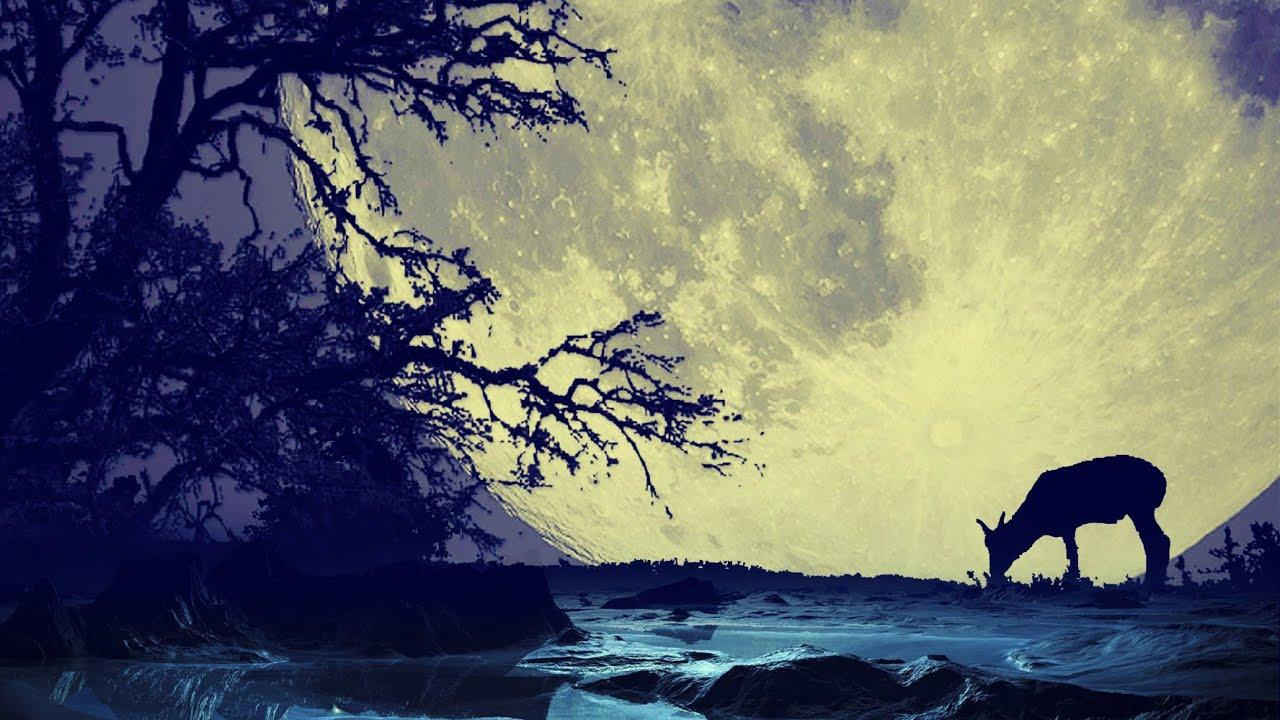 M sica para dormir profundamente y relajarse piano m sica relajante con sonidos de la - Aromas para dormir profundamente ...