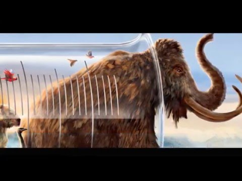 10 EXTINCT ANIMALS THAT WILL BE RESURRECTED