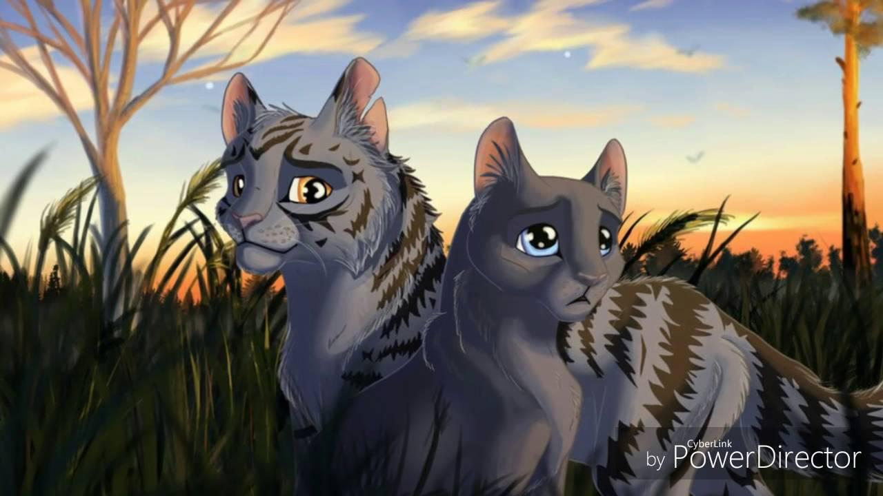 Top 15 Warrior Cat Couples Cats Finest