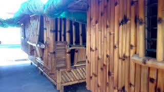 Bentahan : San Carlos Bamboo/ Bahay Kubo Forsale/ Home Remedy/handicraft