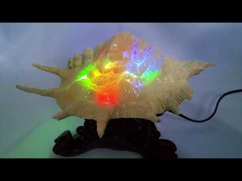 Hand Carved Ganesha Seashell With Unique LED Display