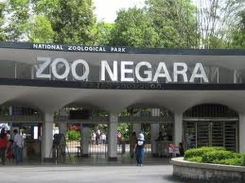 Malaysia National Zoo  travel log - Zoo Negara