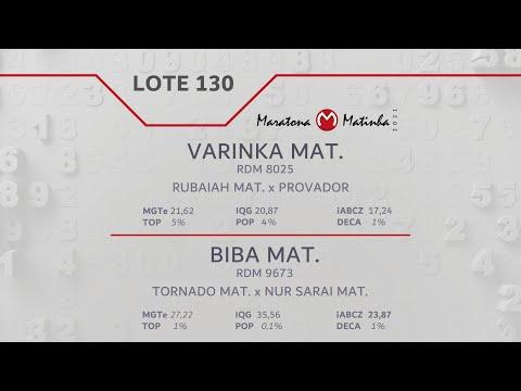 LOTE 130 Maratona Matinha