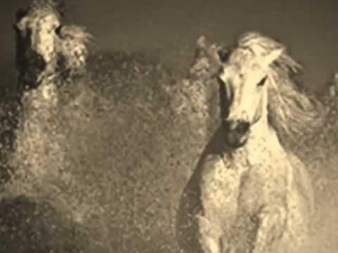 Wild Horses - The Rolling Stones & lyrics