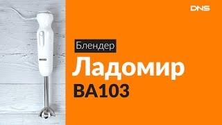 Распаковка блендера Ладомир ВА103 / Unboxing Ладомир ВА103
