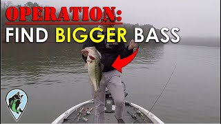 my-plan-for-bigger-bass-in-2020-bass-fishing-insights