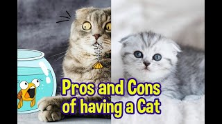 Top 10 Pros and Cons of having a Cat in a Home || Best Pros and Cons of having a Cat 2019