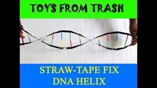 Straw Tape DNA Helix   Kannada   DNA Model!