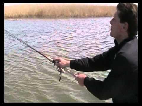 погода бери  раскатах волги рыбная ловля  на апреле