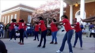 Spring 14 Yard Show: Delta Sigma Theta Thumbnail
