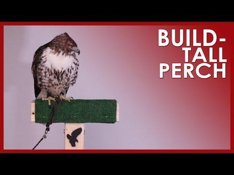 BUILD - TALL PERCH