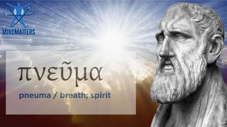That's the Spirit! The Stoic Philosophy of Pneuma