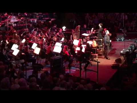John Grant and the Heritage Orchestra - The Seventh Seal (Live) - Royal Albert Hall - 25/07/2017