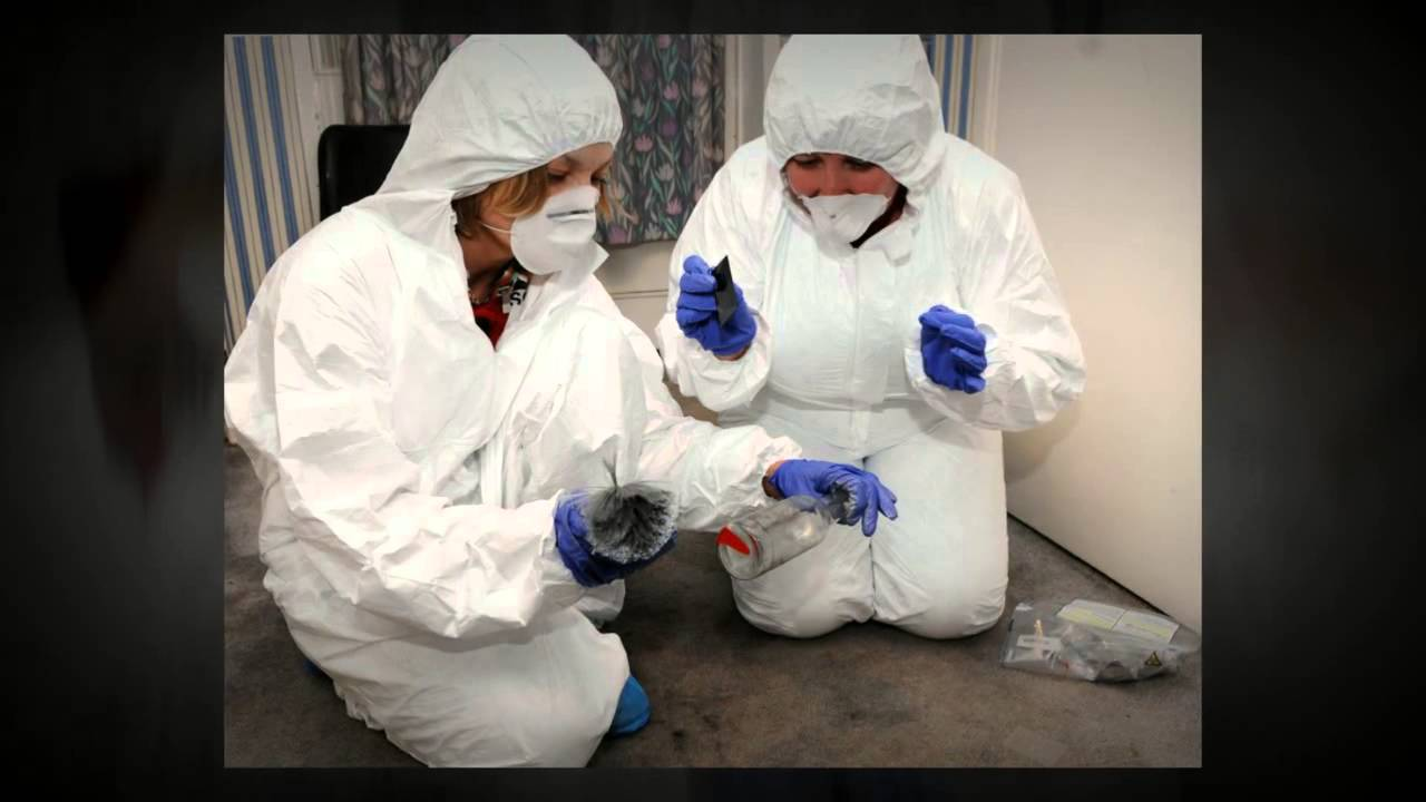 Corporate Csi Forensic Science Team Building Day Youtube