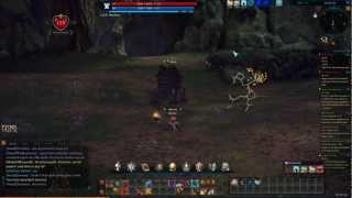 Tera: Warrior -Reckless- BAM Solo (lvl 20 Basilisk)