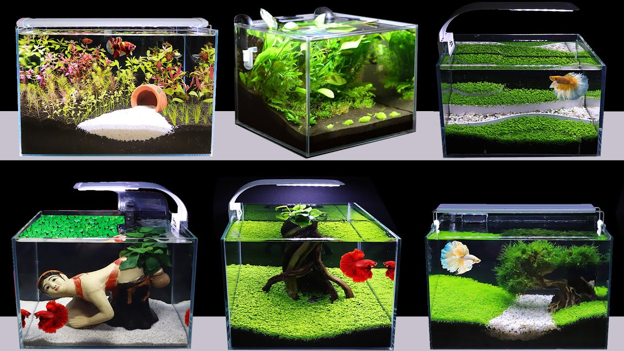 DECRYPTION TOP 5 AMAZING DIY AQUARIUM DECORATION IDEAS FOR BETTA & GUPPY  FISH (NOT GOLDFISH)