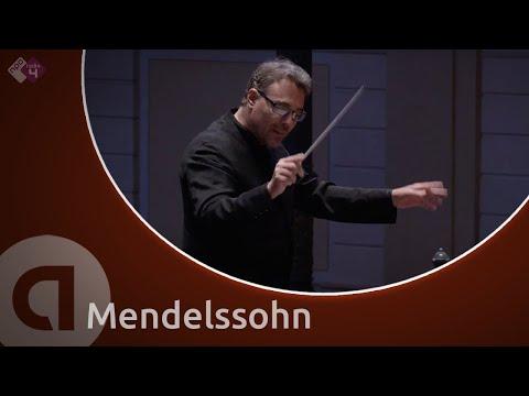 String Symphony No.10 (Nordwestdeutsche Philharmonie)