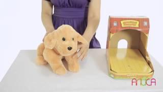 Ласковый щенок - порода Гончая