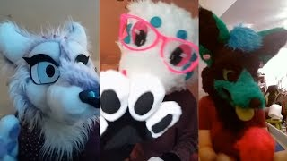 Cringe Furry TikTok Videos