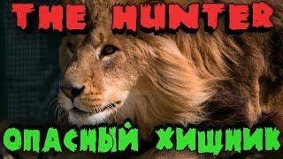 theHunter: Call of the Wild - Охота на дикого льва! Царь зверей в прямом эфире! (Игра охота)