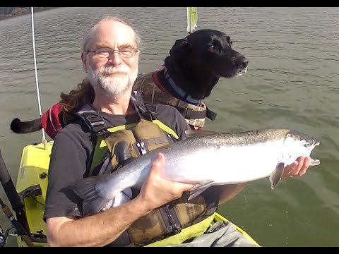 Kayak Fishing With Pepper:  Siltcoos Coho