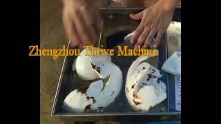 coconut crushing machine/coconut meat machine