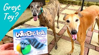 Is the Weazel Ball Greyhound Approved?