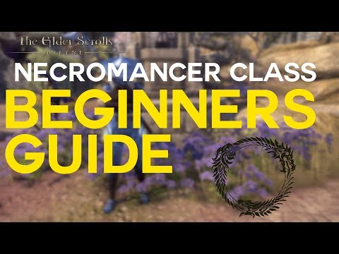 ESO - BEGINNERS GUIDE to Necromancer Class   Elsweyr